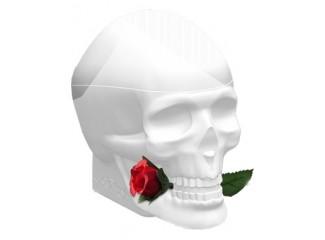Ed Hardy Skulls & Roses for Her